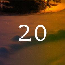 2020-20